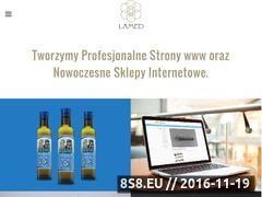Miniaturka domeny lamed.net.pl