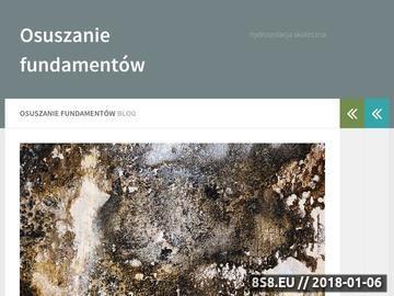 Zrzut strony Odgrzybianie ścian w lexbud.biz.pl