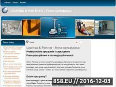 Miniaturka Firma sprzątająca (www.ligensa.pl)