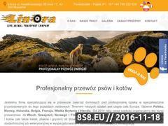 Miniaturka domeny www.linora.pl