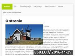 Miniaturka domeny www.lotusgrill.pl