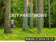 Miniaturka domeny www.lp.gov.pl