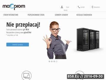 Zrzut strony Projektowanie i pozycjonowanie stron internetowch