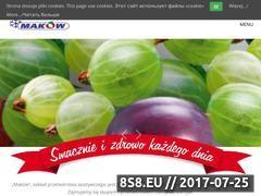 Miniaturka domeny www.makow.com.pl