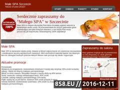 Miniaturka domeny www.male-spa.szczecin.pl