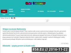 Miniaturka domeny malitesterzy.pl
