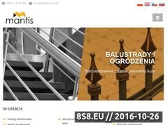 Miniaturka domeny mantis.com.pl