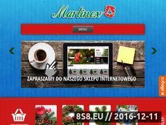 Miniaturka domeny martinex-choinki.pl