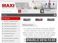 Miniaturka domeny www.maxlamp.pl
