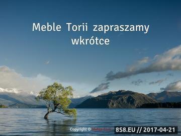 Zrzut strony Meble kuchenne Torii