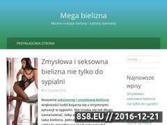 Miniaturka domeny www.megabielizna.pl
