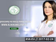 Miniaturka domeny www.melitus.pl