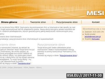 Zrzut strony Tworzenie i pozycjonowanie stron - MESI