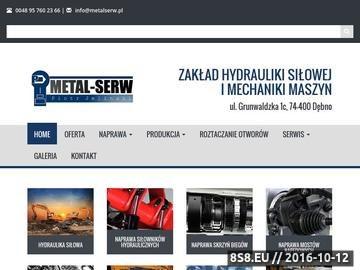 Zrzut strony Producent siłowników hydraulicznych