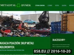 Miniaturka domeny metalstaldymek.pl
