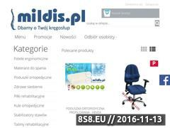 Miniaturka domeny mildis.pl