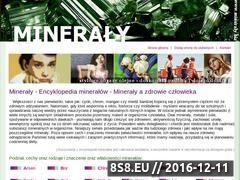 Miniaturka domeny www.mineraly.biz