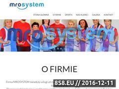 Miniaturka domeny www.mro-system.pl