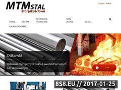 Miniaturka domeny www.mtmstal.pl