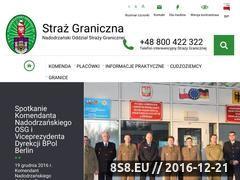 Miniaturka domeny www.nadodrzanski.strazgraniczna.pl