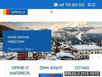 Zrzut strony Ferie w górach z dziećmi z naferie.pl