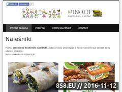 Miniaturka domeny www.nalesniki.eu