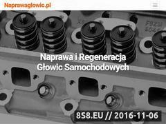 Miniaturka domeny naprawaglowic.pl