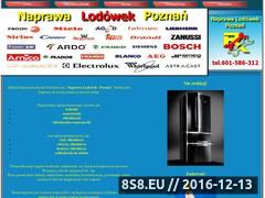 Miniaturka domeny www.naprawalodowek.com