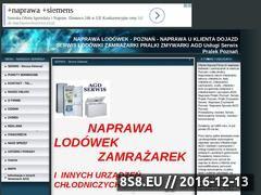 Miniaturka domeny www.naprawalodowek.pl.tl