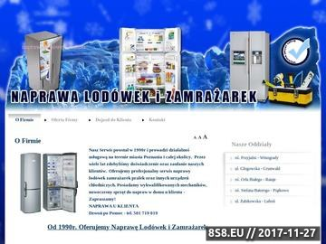 Zrzut strony Serwis i Naprawa Lodówek i Zamrażarek