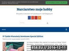 Miniaturka domeny www.nartyserwis.pl