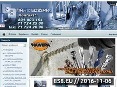 Miniaturka domeny www.narzedziak.pl