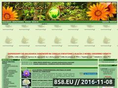 Miniaturka domeny www.nasionaswiata.pl