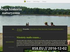 Miniaturka domeny naturysta93.blox.pl