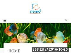 Miniaturka NEMO-aquaria. Serwis akwarystyczno- zoologiczny. (www.nemo-aquaria.pl)
