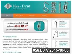 Miniaturka domeny www.nes-drut.com.pl