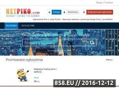 Miniaturka domeny www.netpiko.com