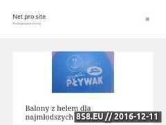 Miniaturka domeny netprosite.pl