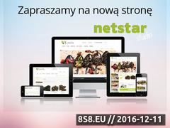Miniaturka domeny netstarstudio.pl