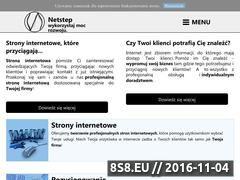 Miniaturka domeny netstep.pl