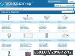Miniaturka domeny www.niebieskalazienka.pl