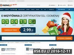 Miniaturka domeny www.niebieskidomek.pl