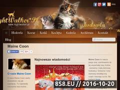 Miniaturka domeny www.nightwalker.pl