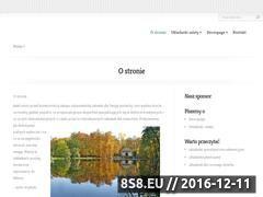 Miniaturka domeny ninawertz.pl
