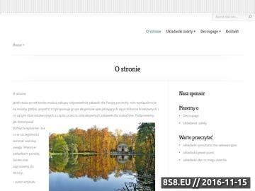 Zrzut strony Zespół muzyczny Kraków