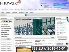 Miniaturka domeny niuwsky.pl