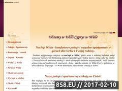 Miniaturka domeny www.noclegiwisla.com