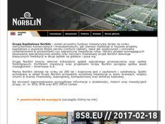 Miniaturka domeny www.norblin.eu