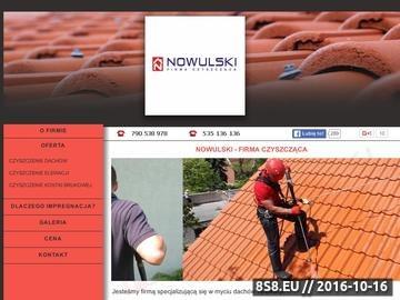 Zrzut strony Firma czyszcząca - Nowulski