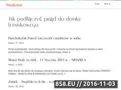 Miniaturka domeny ntsolution.com.pl
